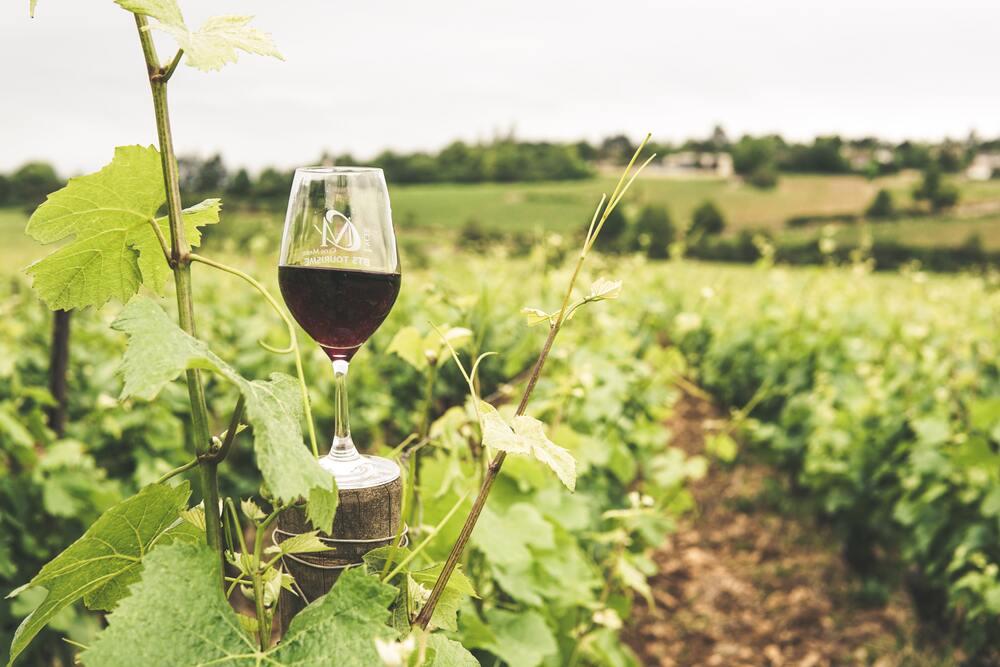 rode wijn waarom gezond